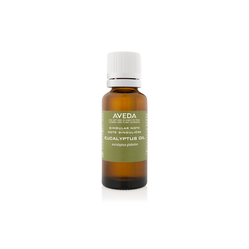 Eucalyptus Oil - 30 ml